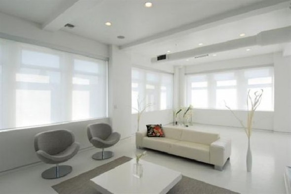 Black and White Apartment Interior Designs living room