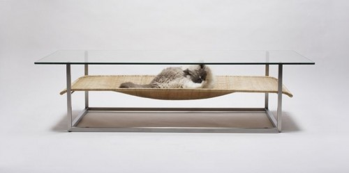 Coffee Table With Integrated Cat Hammock