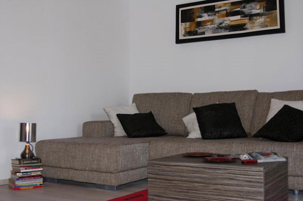 interior desian a living room with modern couch
