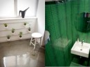 Green Plant and Bathroom - Small Polish Apartment Designs
